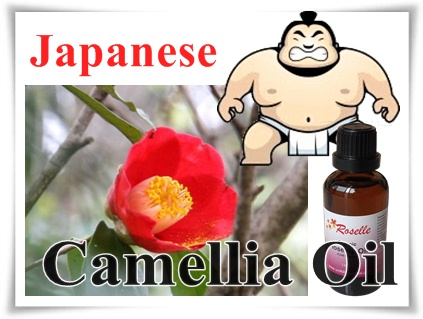 Organic Camellia Japonica seed oil, from Japan - SINGAPORE 100% Pure ...
